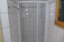 WC mit Duschkabine und Lavabo